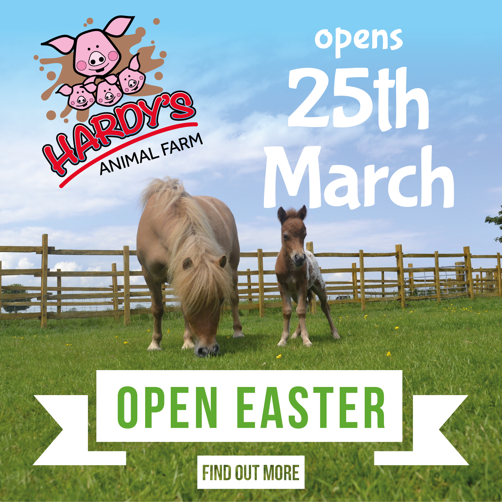 hardys animal farm easter opening times
